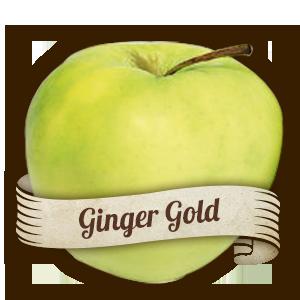 Ginger Gold