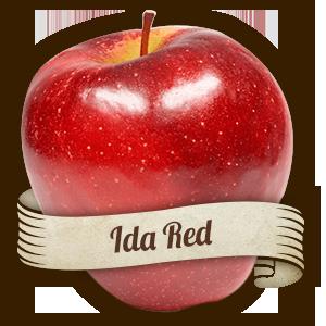 Ida Red