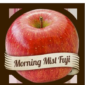 Morning Mist Fuji